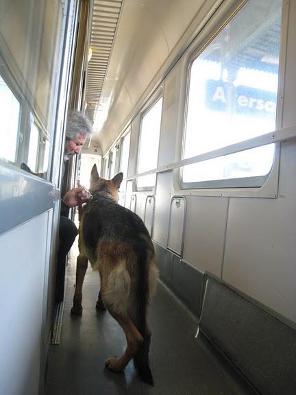 往 Rome 火車上認識的朋友