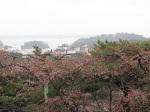 從展望台看松島