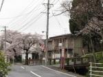 漫步柴田町