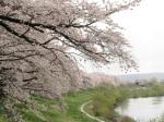 河的曲線構成如此美景