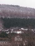 早兩個月前應該還是樹冰(樹氷)