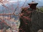 紅色的樹枝與納經堂(納経堂)