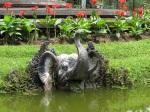 順道一遊Bali Botanic Gardan