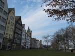 萊茵河旁的草地