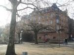 酒店附近的萊茵河畔 @ 3
