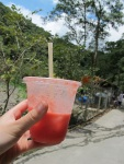 回程的西瓜汁